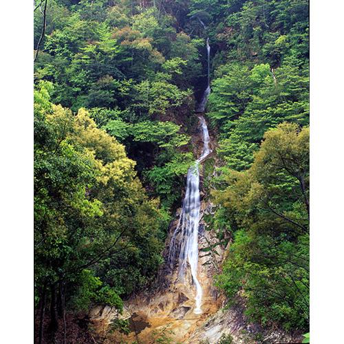 新緑の観音滝