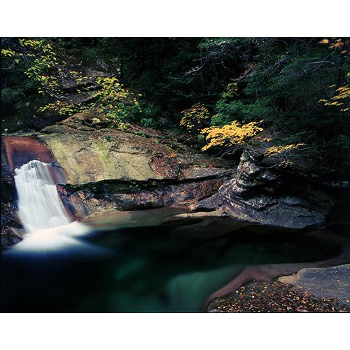 秋のエメラルドグリーン
