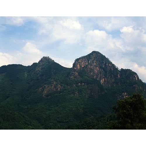 新緑の矢筈岳