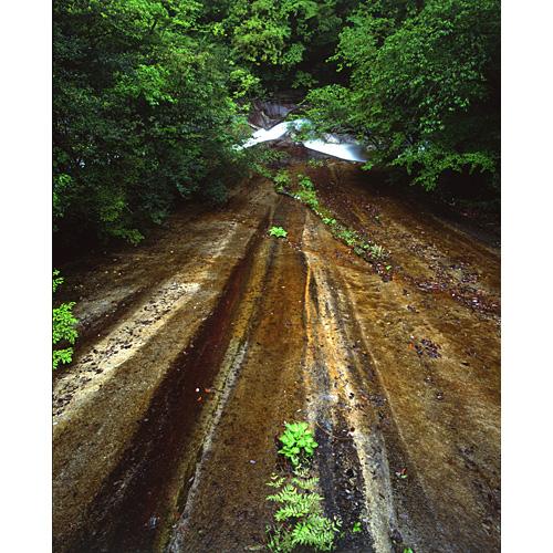 新緑の一枚峡谷