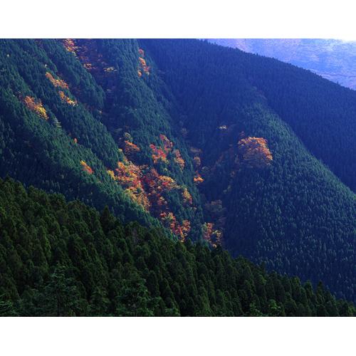 奥千丈の秋