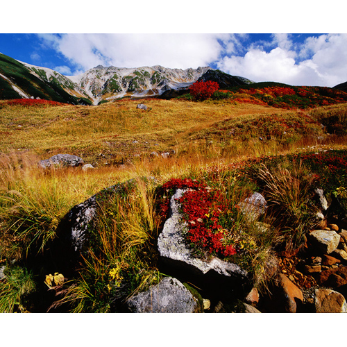 紅葉の立山
